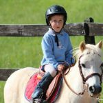 Fun horse show