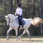 combined training show